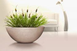 Designový květináč CAPRI mísa 52 cm kámen hnědý Lienbacher - vše pro venkovní posezení na zahradě a na terase