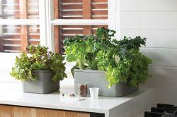Květináč FARM BOX LARGE šedý Keter - vše pro venkovní posezení na zahradě a na terase