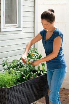 květináč EASY GROW antracit Keter - vše pro venkovní posezení na zahradě a na terase