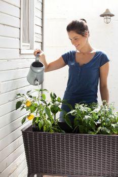 květináč EASY GROW hnědý Keter - vše pro venkovní posezení na zahradě a na terase