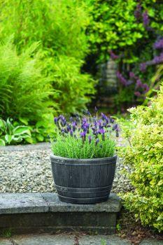 Květináč BLENHEIM HALF BARREL 22L CÍN stewart - vše pro venkovní posezení na zahradě a na terase
