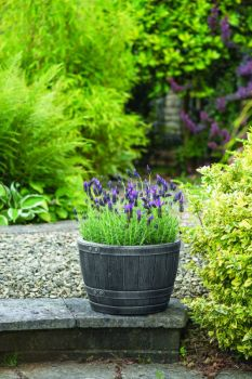 Květináč BLENHEIM HALF BARREL 81L CÍN stewart - vše pro venkovní posezení na zahradě a na terase